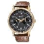 Citizen Mens Eco-Drive AO9003-08E Watch
